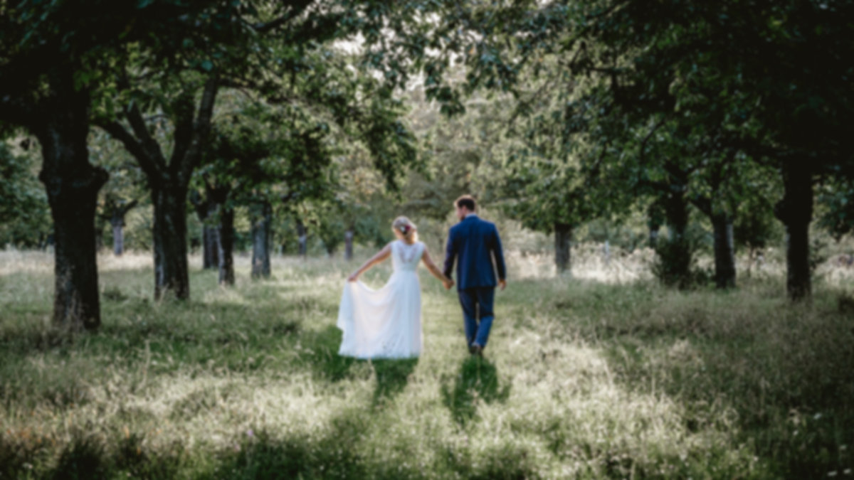para-młoda-sesja-w-lesie.jpg Para młoda trzymając się za ręce idzie leśną ścieżką pomiędzy aleją drzew. Pan młody w granatowym garniturze idzie po lewej stronie, a panna młoda w białej sukni ślubnej po lewej stronie.