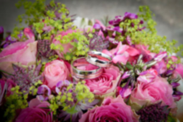 obrączki-na-bukiecie-ślubnym.jpg 2 złote obrączki ślubne ułożone na bukiecie ślubnym złożonego z różowych kwiatów oraz zielonych dodatków kwiatowych.