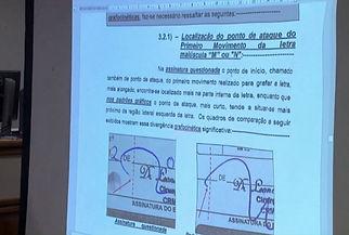 perito2.jpg