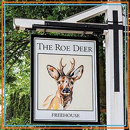 Roe Deer.jpg