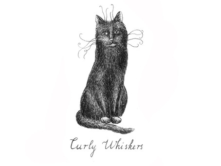 Curly Whiskers' Guide to Finding a Whisperer Part 1