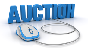 DURANT CONSULTING INC HOSTING ONLINE AUCTION GIVEAWAY