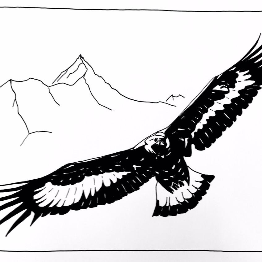 L'aigle du val d'Anniviers