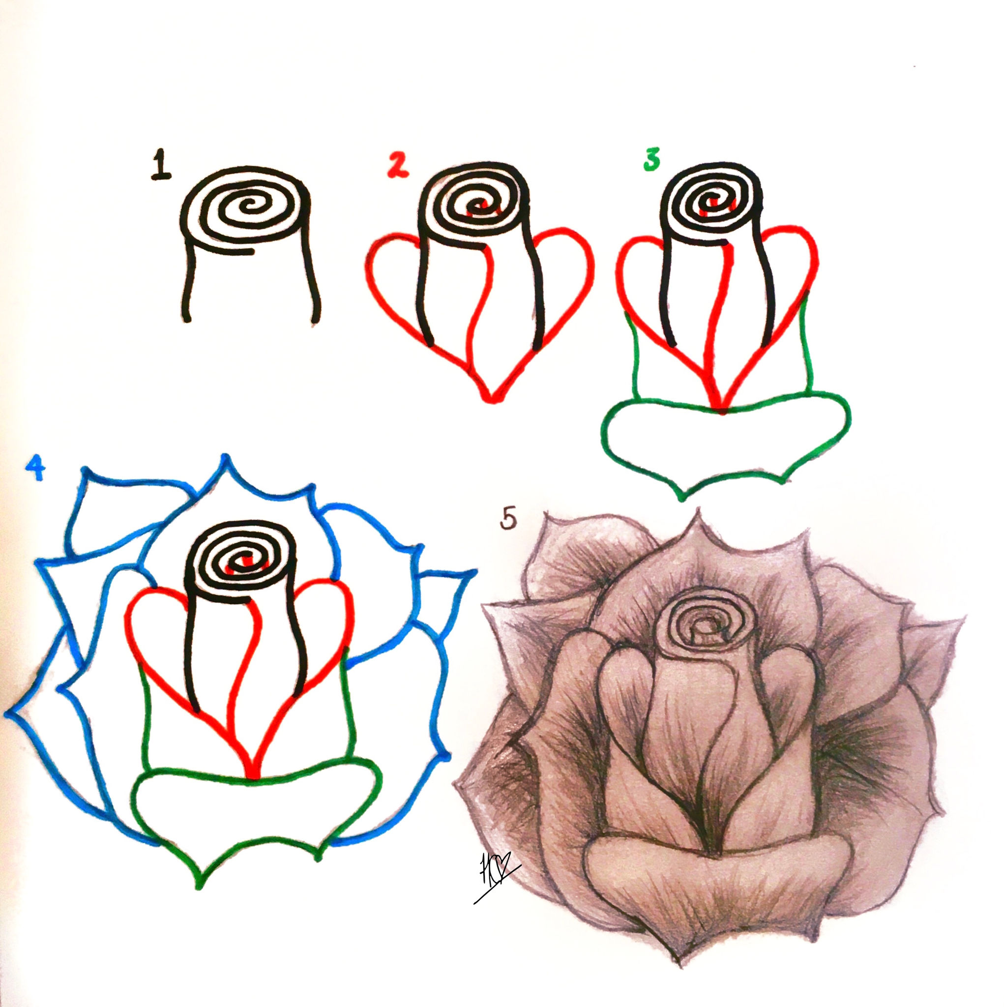 How To Draw A Realistic Rose Step By Step Picture Guide For Beginners