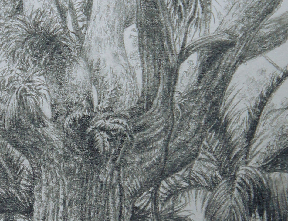 Giant detail