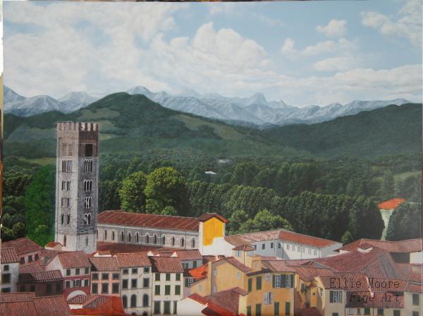 Lucca - work in progress