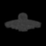 tls_logo_final_edited_edited.png