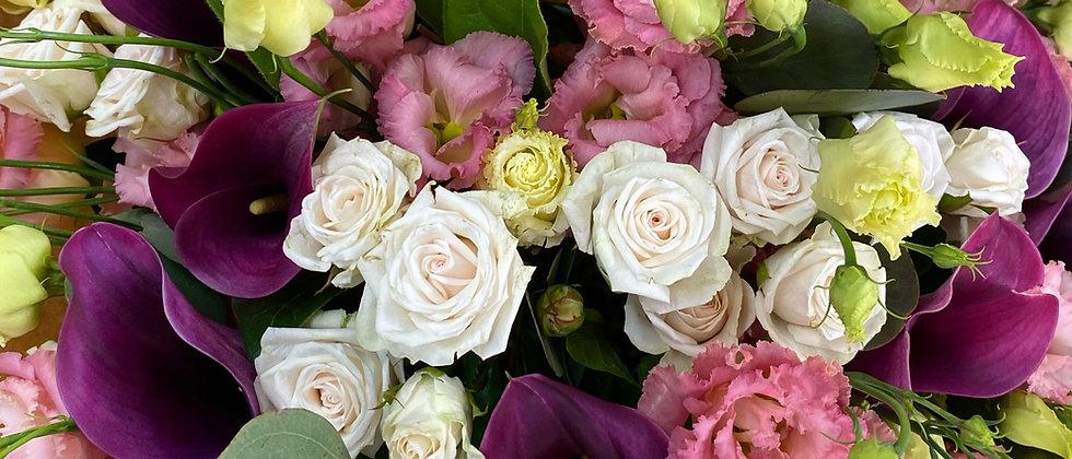 Bouquet Ompa pastel