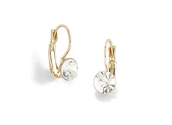 N&B Single Stone Hook Earrings
