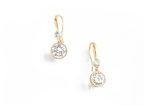 N&B Double Stone Hook Earrings