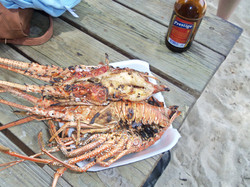 Fresh caught and grilled lobster with a Prestige (local beer) on the beach at Labadee