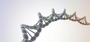 Shiatsu und Ernährungsberatung München Schwabing gesunde DNA