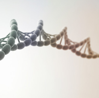 DNA Storage & Communication for Future 6G