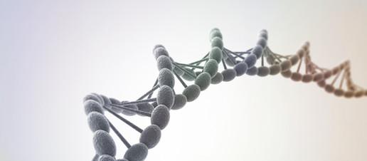 Il gene che predispone all'Alzheimer e come modularlo con lo stile di vita