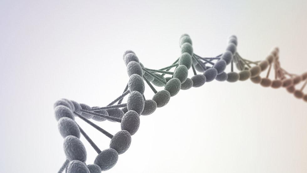 Activation ADN à 24 brins
