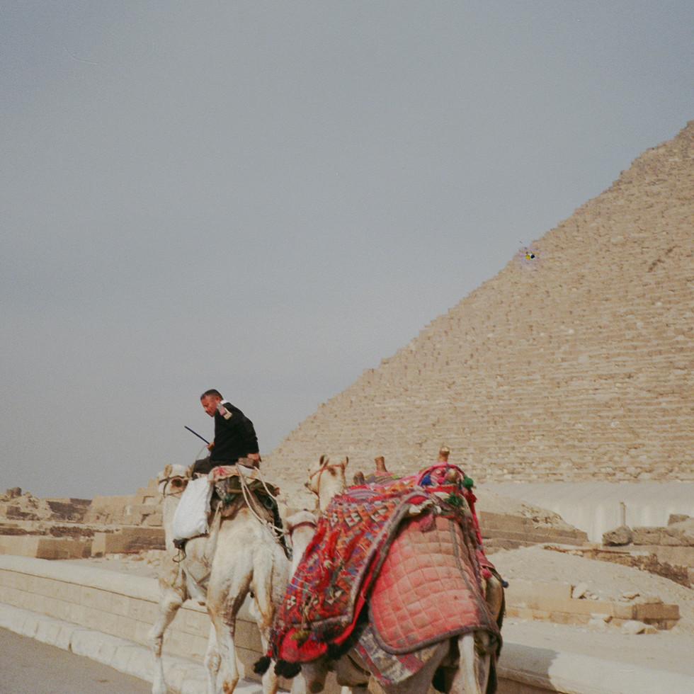 egypt.2016