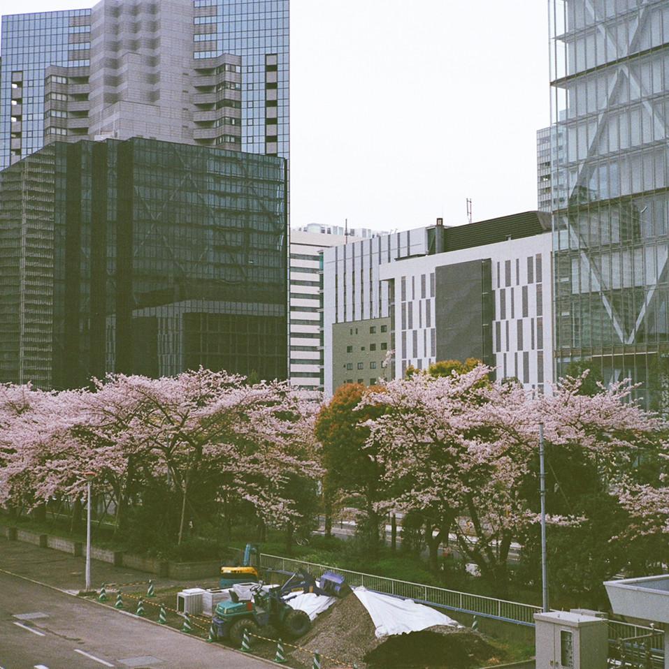 tokyo.2016