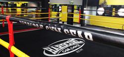 Hardcore_Boxing_Ring_Scaled