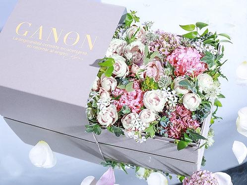 GANON BOX