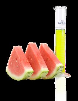 Watermelon - Skincare Ingredient