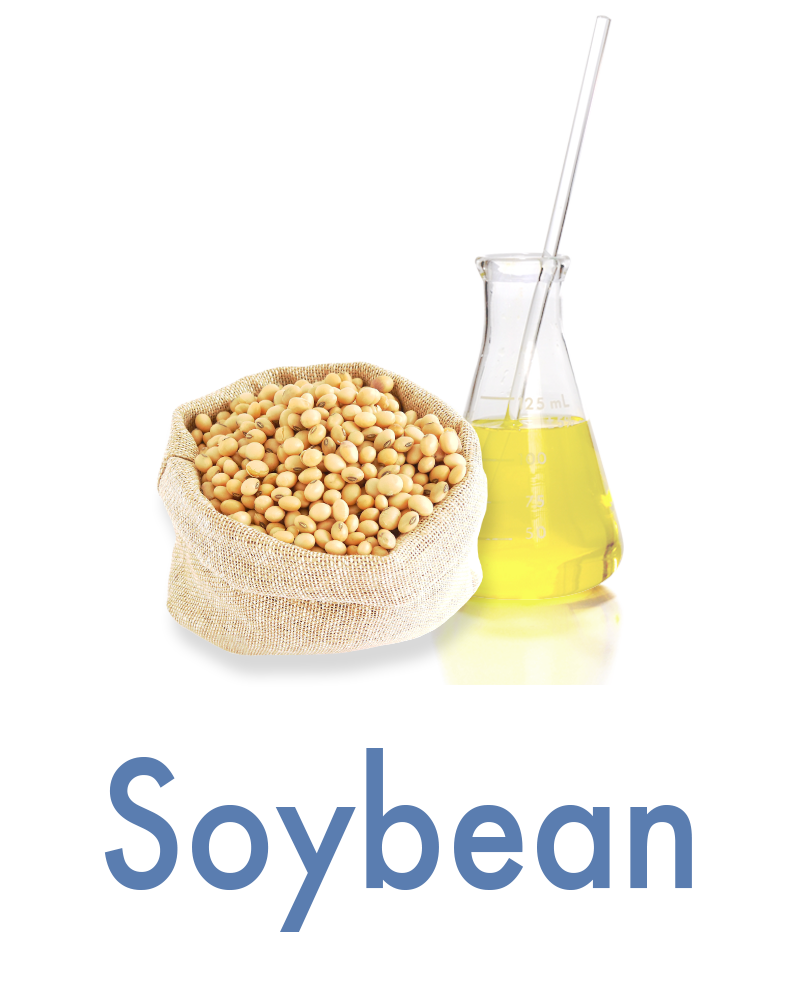 soybean Anti-aging Ingredient