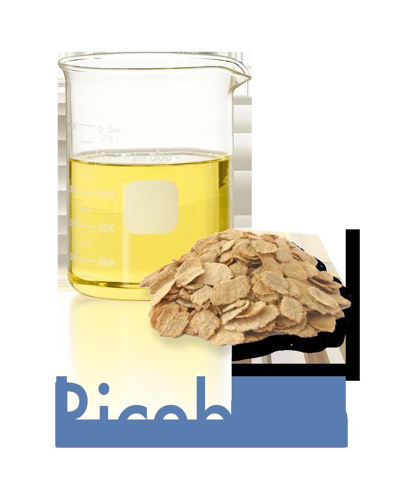 ricebran Anti-aging Ingredient