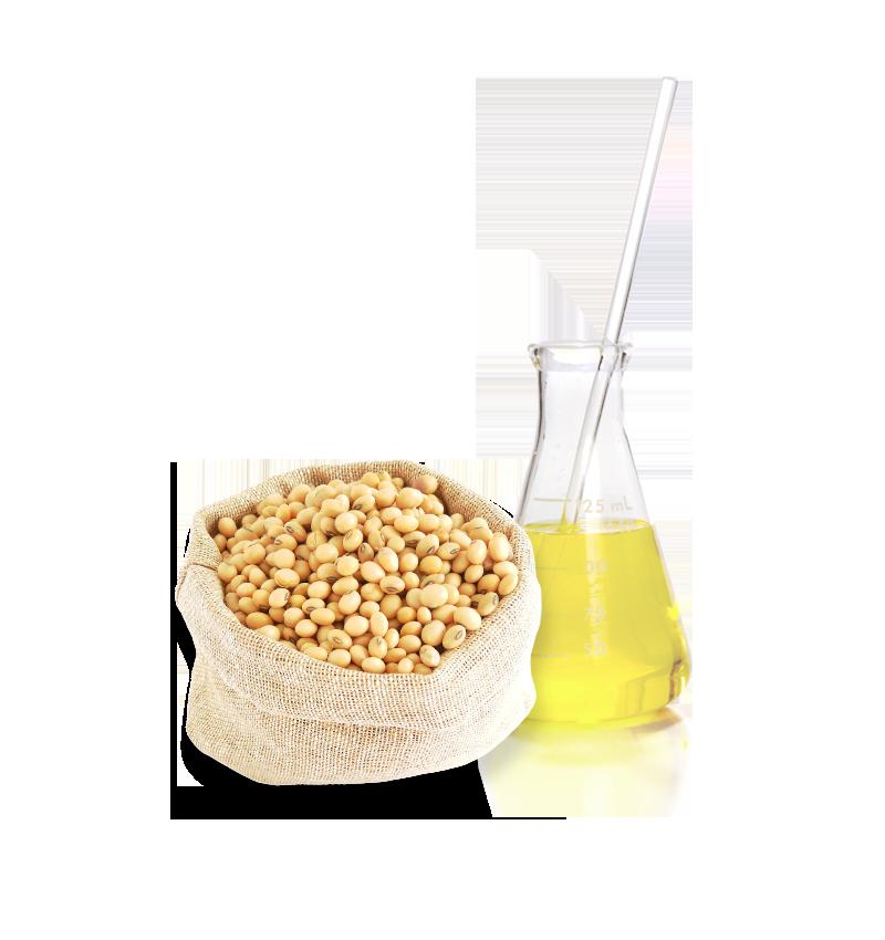 Smart soybean Smoothing ingredient
