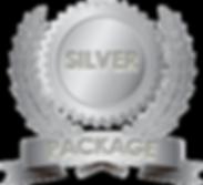silver-plan.png