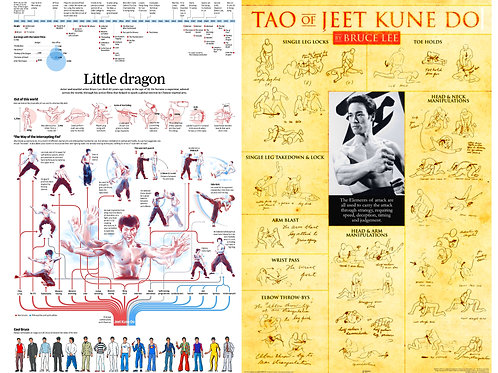 Bruce lee infographic