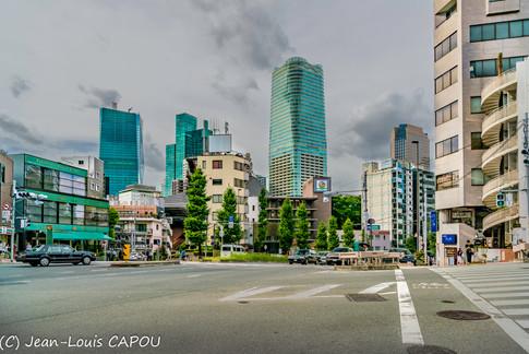 La Cité et sa forêt d'immeubles