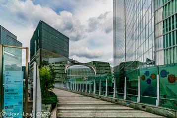 Une allée de verre serpentant entre les immeubles