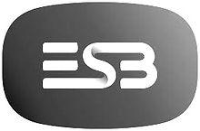 ESB_edited.jpg