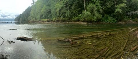 Chilliwack Lake Spawning Gravel Augmentation