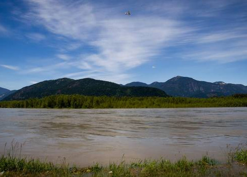 First Nations ask Ottawa to overturn Fraser River fishing restrictions