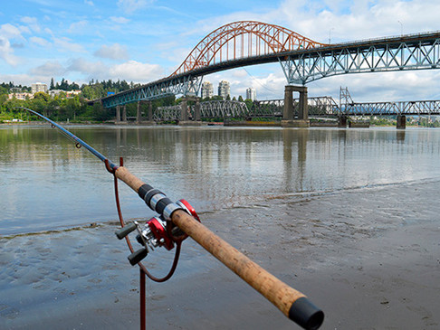 SUMMER IN SURREY: Where to cast a fishing line in Surrey