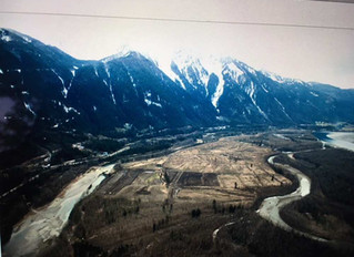 B.C. clearcutting, bridge building seen as threat to sturgeon, 'Heart of the Fraser'