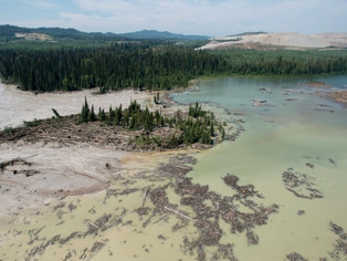 Future of Fraser River's 2nd largest sockeye population unclear 3 years after mining disaster