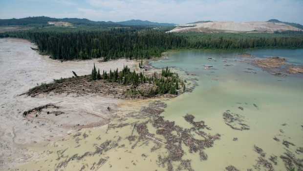 The tailings pond breach near the town of Likely, B.C., released millions of cubic metres of metals-laden sand, contaminating lakes, creeks and rivers in the region. (Jonathan Hayward/Canadian Press)
