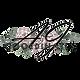 AJ Coordinates logo.png