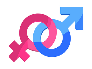 Your fork is female, your spoon is male: Gender is a big issue in German language and culture