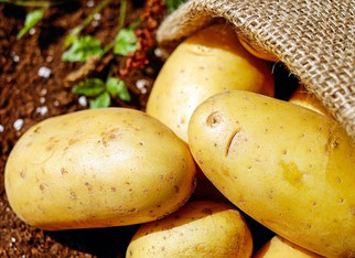 "Don't call me Kraut - … the proper term should probably be ""potato"""