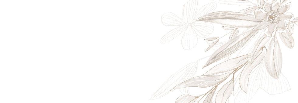 WhiteFlowerBg.jpg
