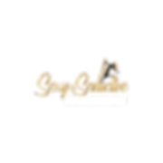 Logo Modified 2.png