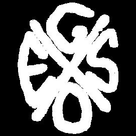 gesox_neu_transparent_weiß.png