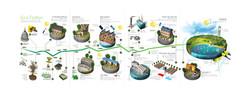 Infographic - Tijdlijn duurzaam bouwen