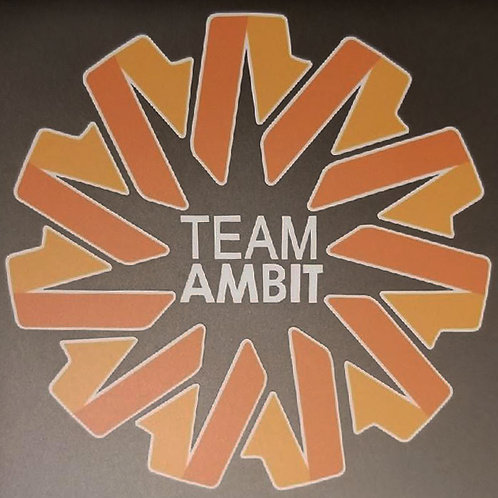 5 Team Ambit Decals