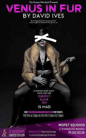 Venus in Fur poster.jpeg