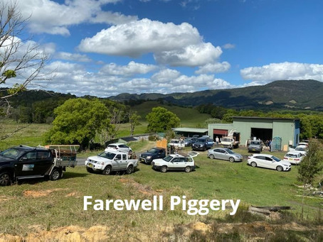 MURWILLUMBAH THEATRE MOVES OUT OF THE PIGGERY INTO NEW REHEARSAL PREMISES