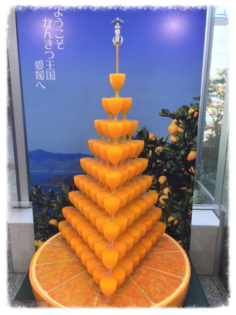 松山空港のミカン_edited.JPG