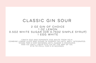Classic Gin Sour